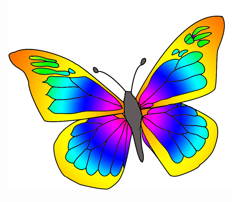 787x685 Top 81 Butterfly Clipart