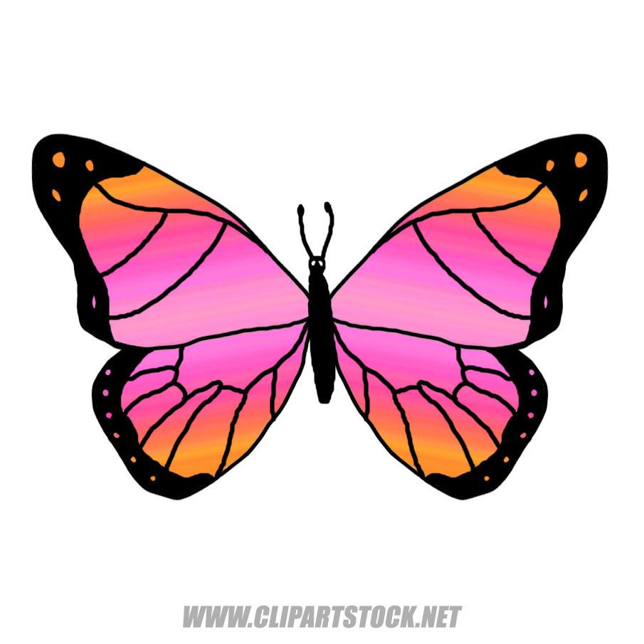 905x905 Butterfly Clip Art Clipart Panda