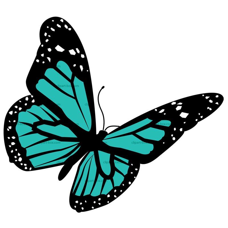 800x800 Butterfly Design Clipart Clip Art Library Designs