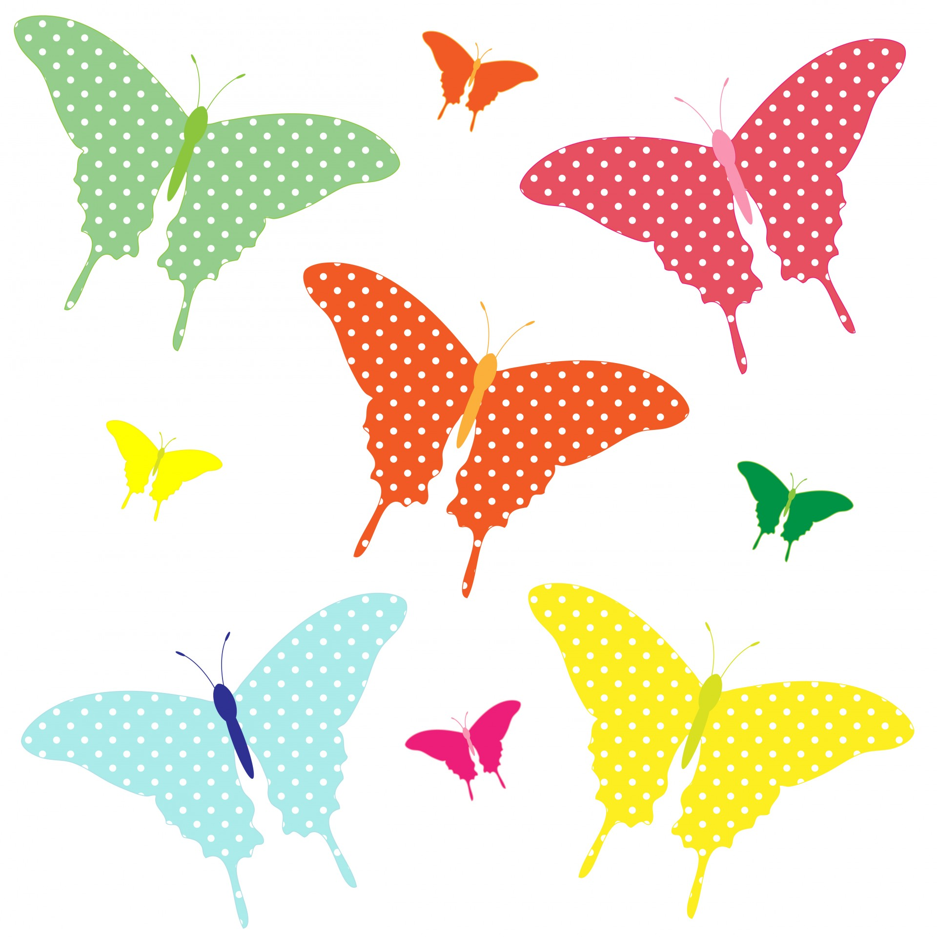 1920x1920 Colorful Butterflies Clipart Free Stock Photo