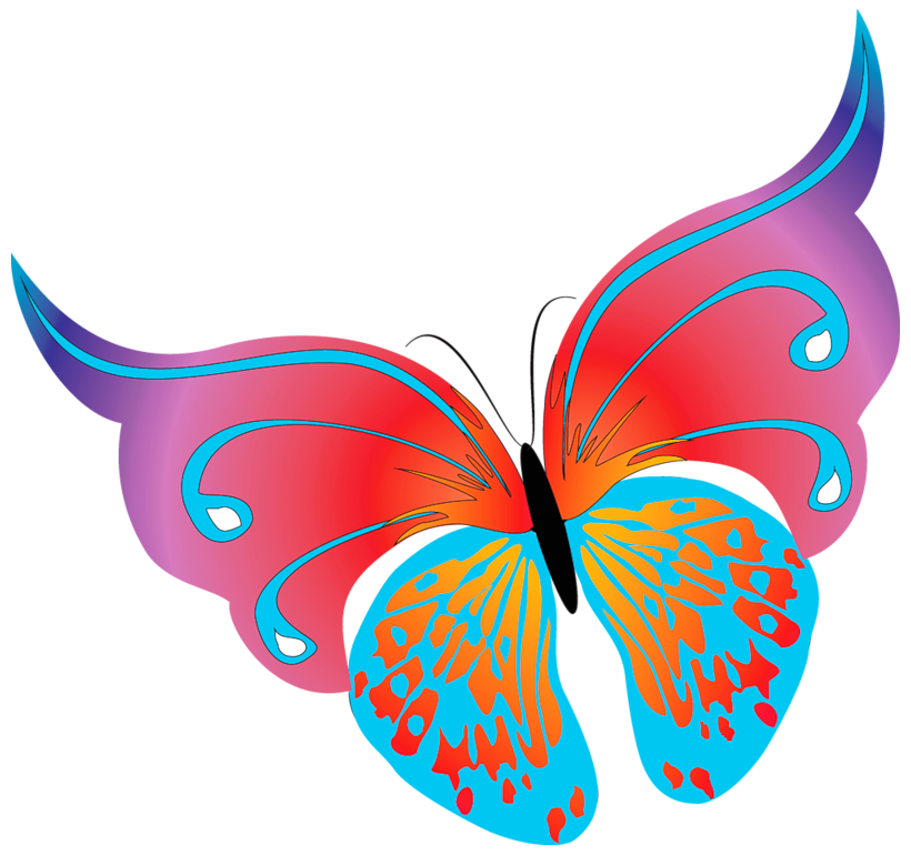 820x770 Butterflies Transparent Png Pictures