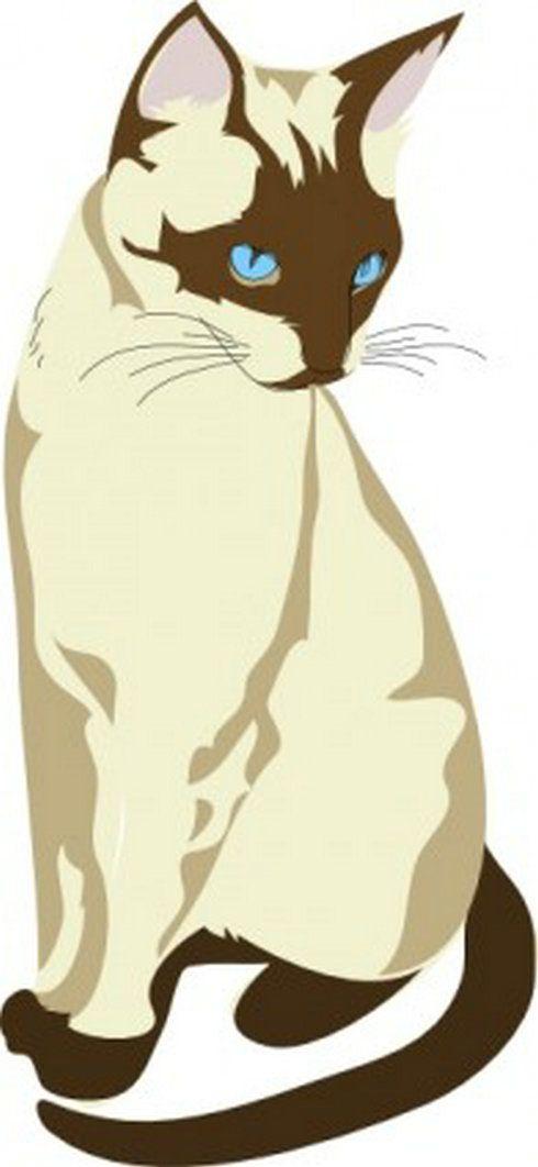 490x1062 Gatto Cat Clip Art 4 Free Vector Download