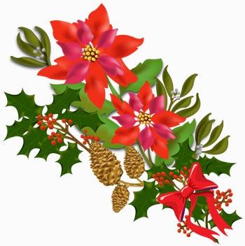 350x352 Free Clipart Christmas Flowers