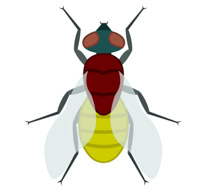 210x190 Free Animal Clipart