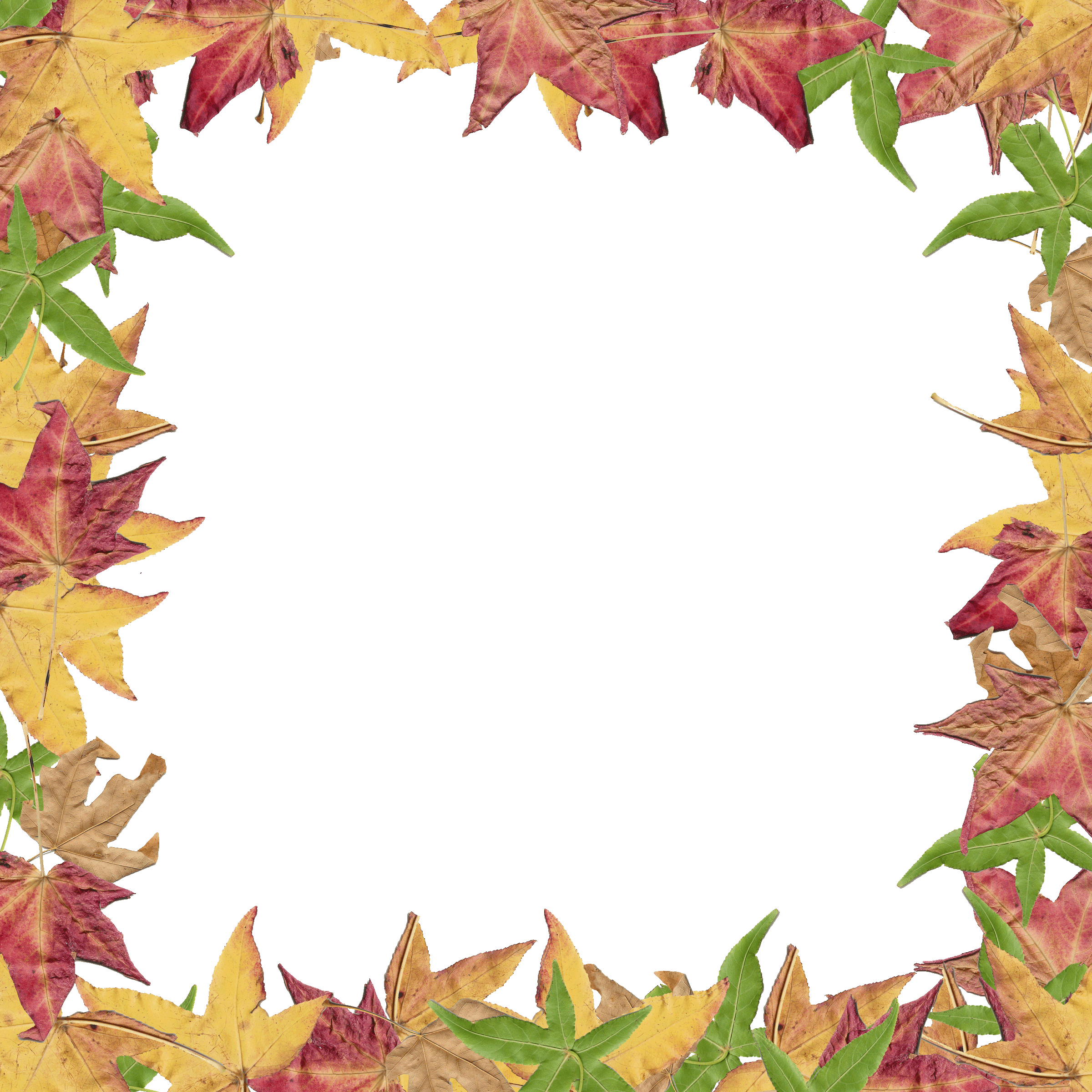 free clipart fall leaves at getdrawings com free for personal use rh getdrawings com clip art fall leaf border clipart fall borders