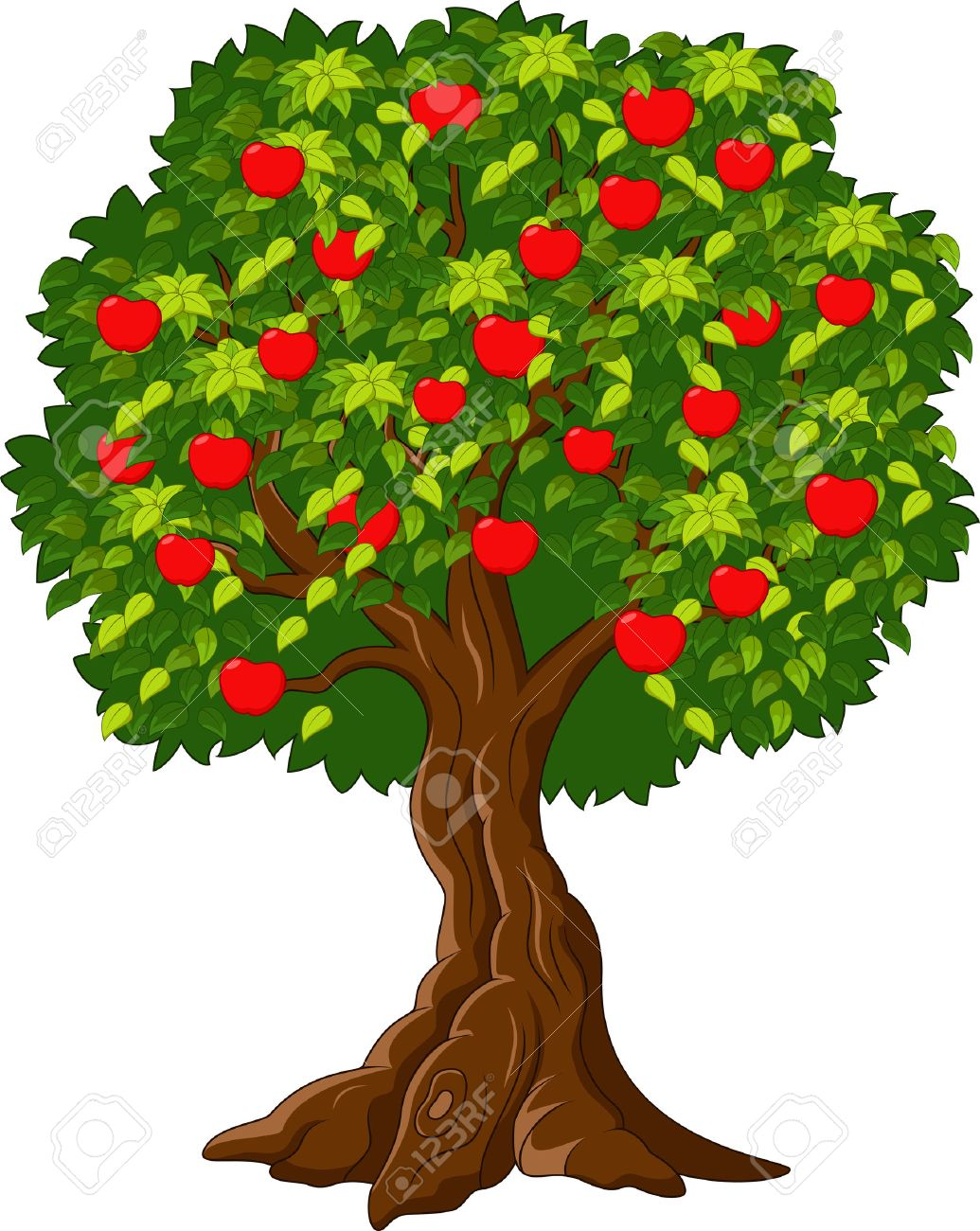 1035x1300 Cartoon Picture Of A Tree Sevimlimutfak
