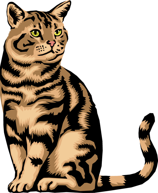 555x675 Free Kitten Clipart Pictures