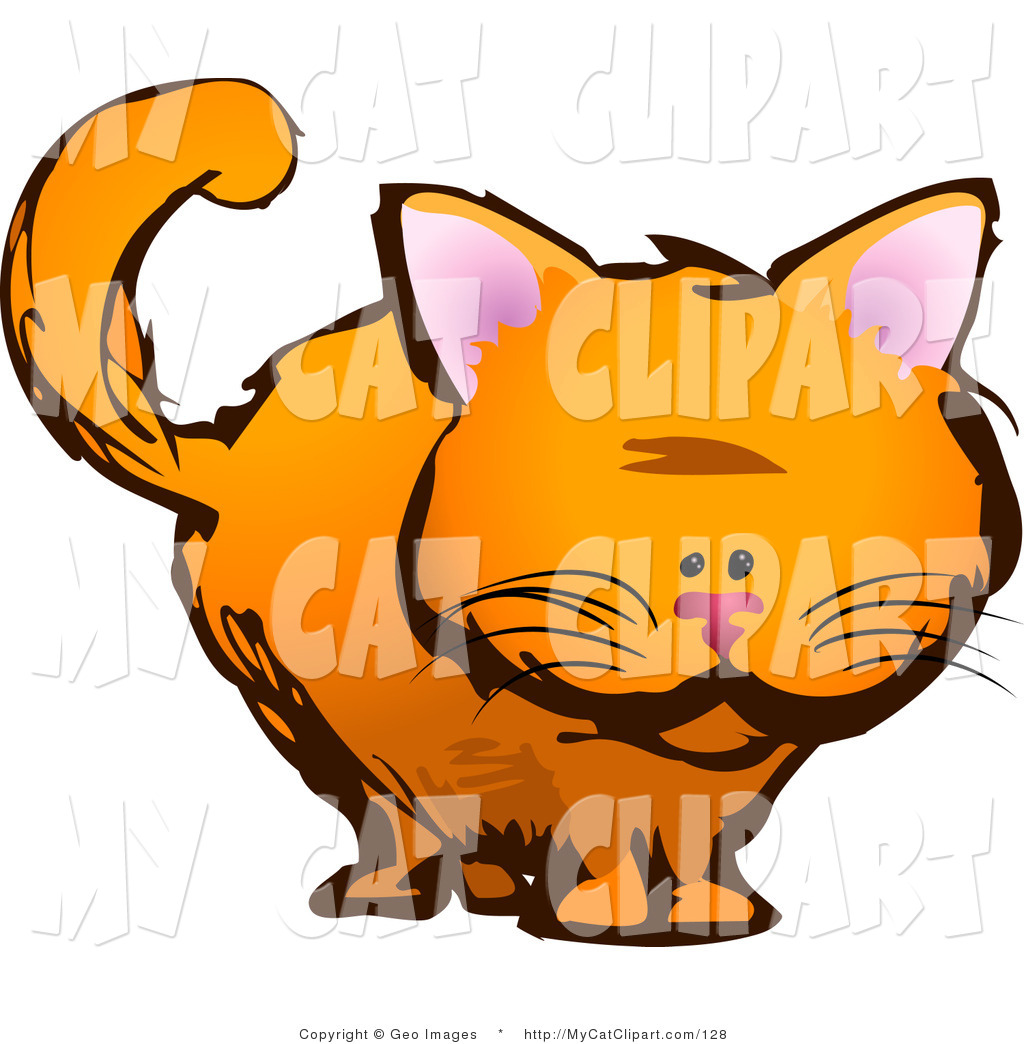 1024x1044 Royalty Free Stock Cat Designs Of Kittens