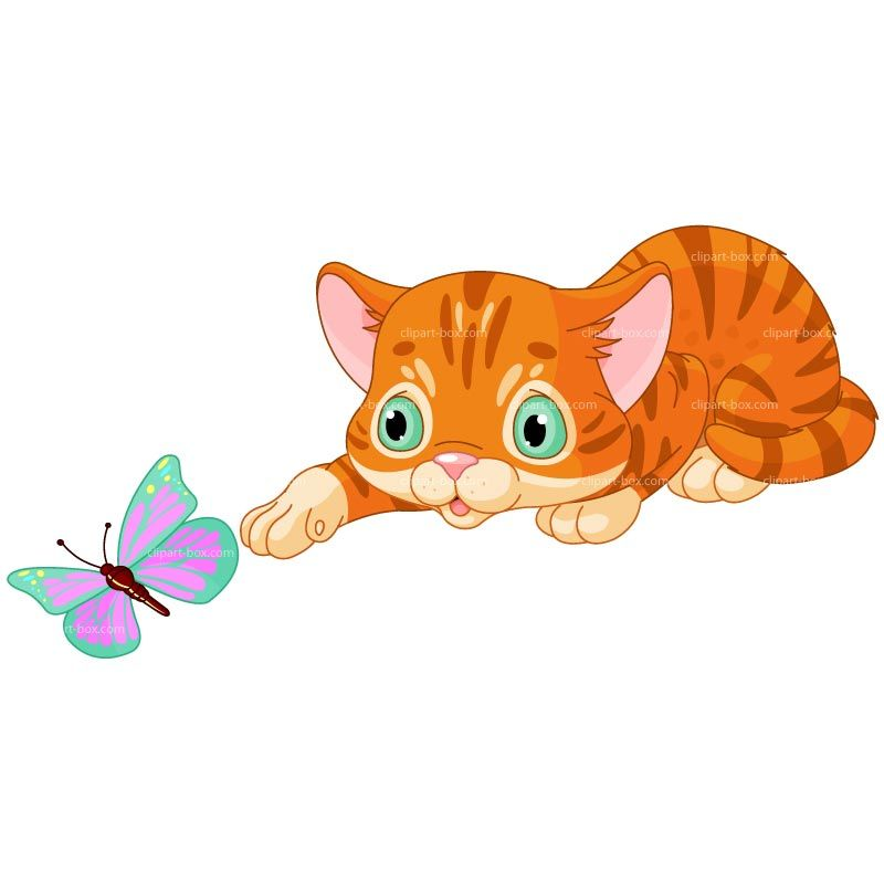 800x800 Clipart Kitten Playing With Butterfly Royalty Free Vector Design