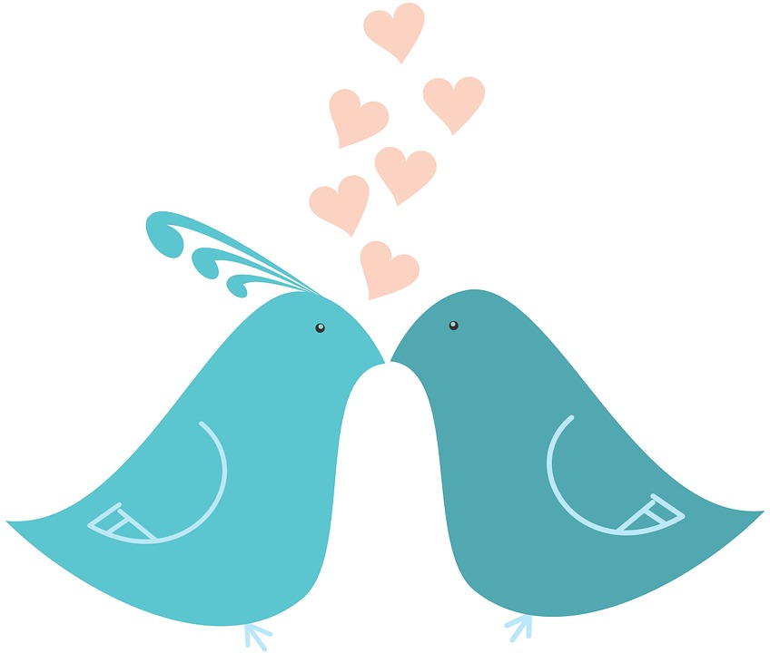 848x720 Collection Of Love Birds Clipart Buy Any Image And Use It