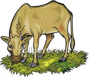 300x262 Grazing Clip Art Clipart Collection
