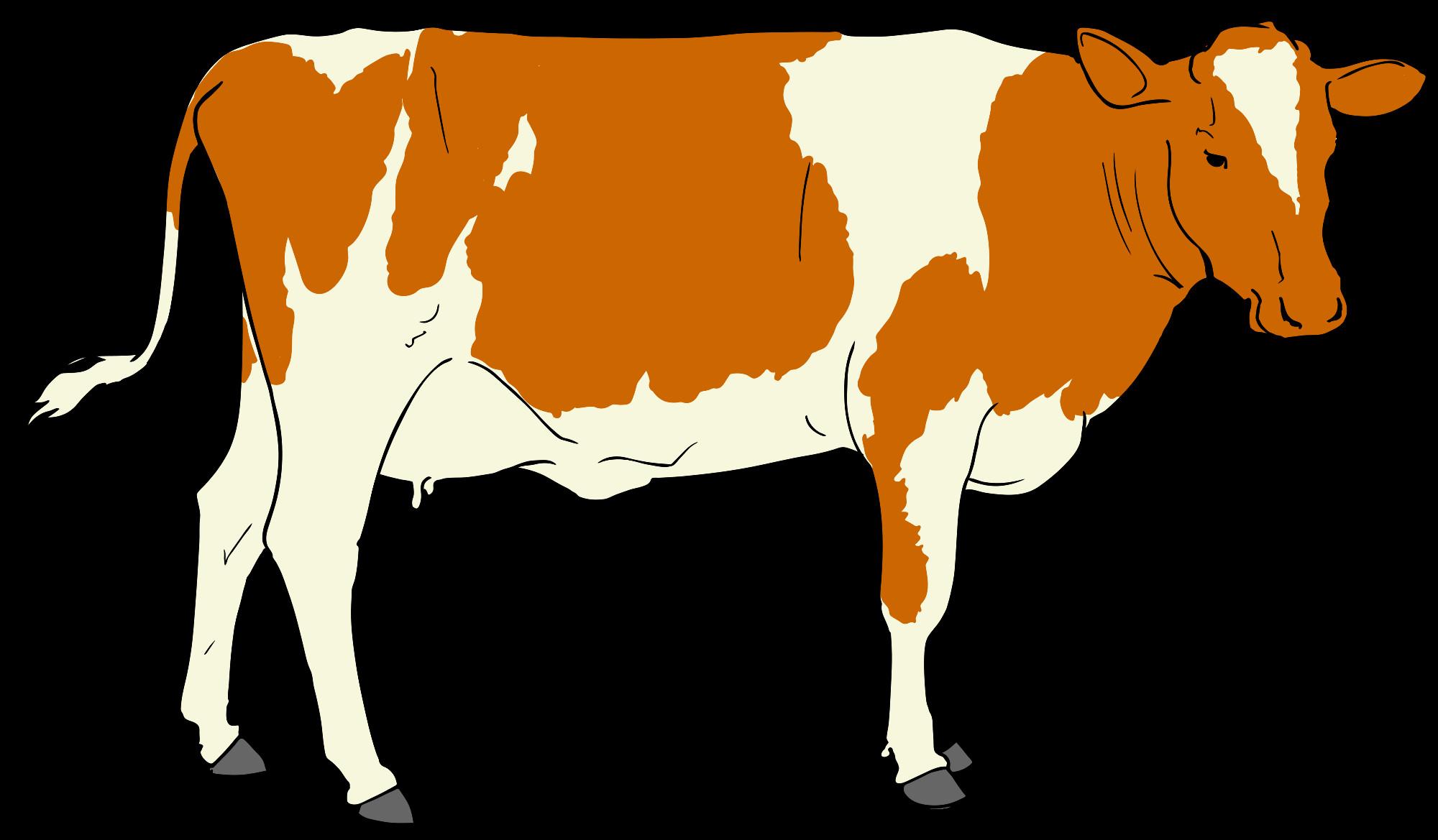 2000x1169 Clip Art Cow Free Cow Clip Art Alihkan.us