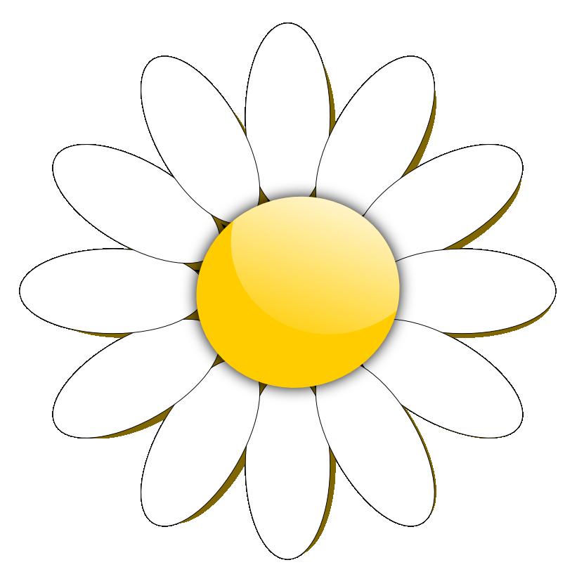 831x824 Daisy Clipart Dead