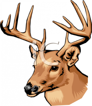 304x350 Deer Head Clip Art Free Collection Download And Share Deer Head