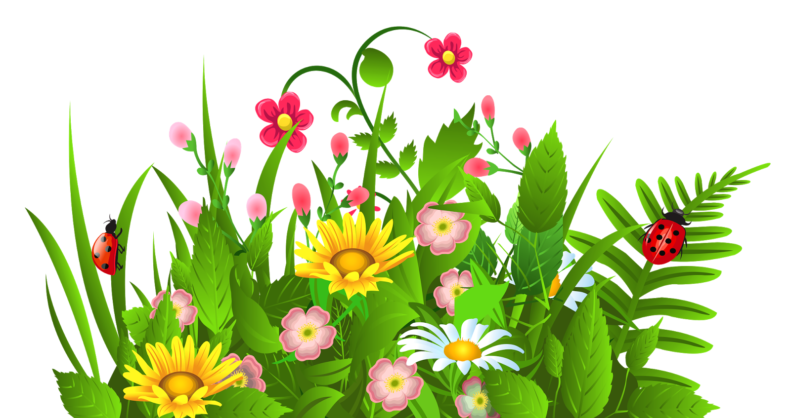 1600x847 Flower Garden Cliparts Free Download Clip Art Clipart Png
