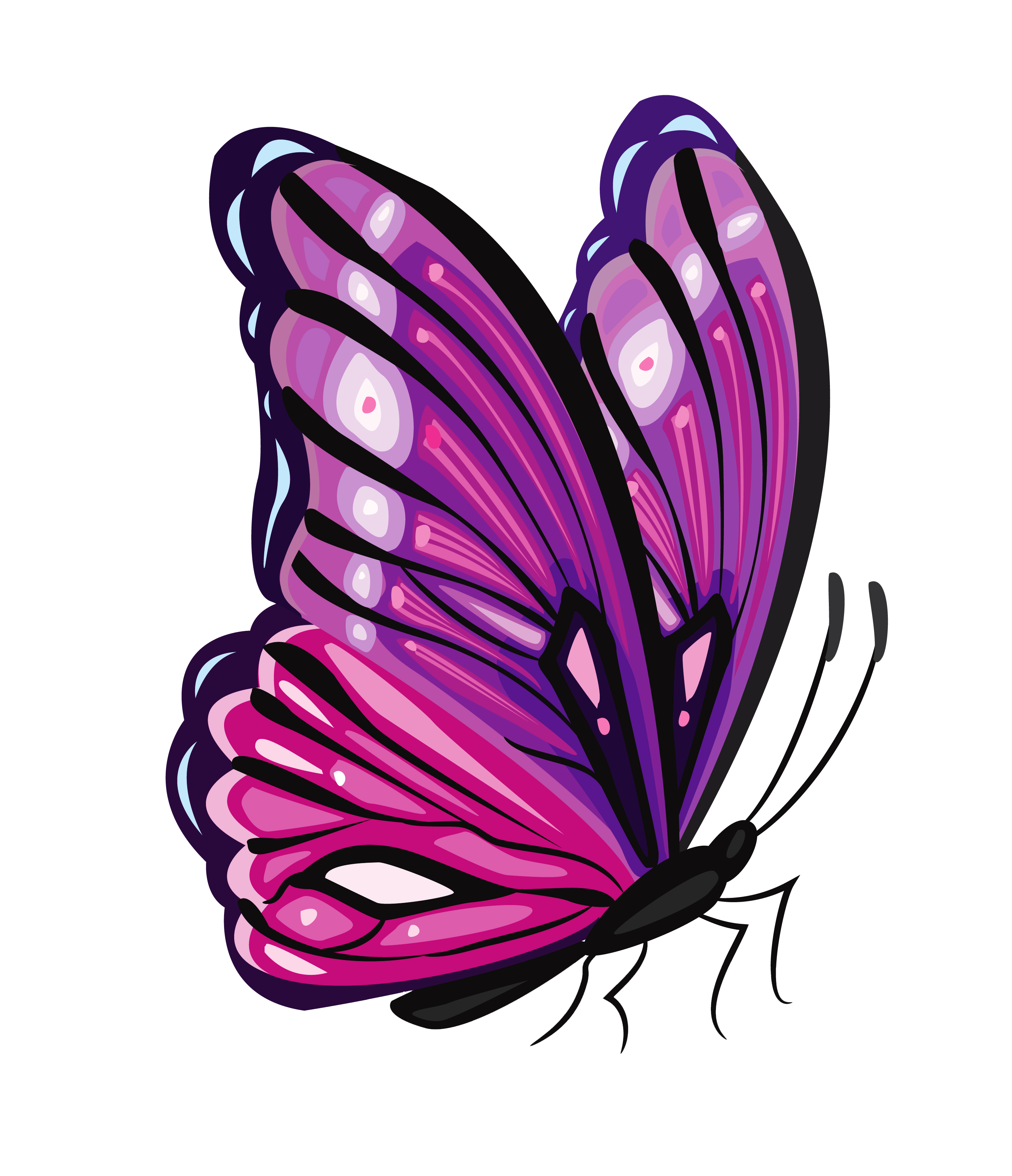 2796x3251 Purple Butterfly Png Clipart Pictureu200b Gallery Yopriceville