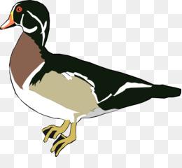 260x240 Free Download Donald Duck Download Clip Art