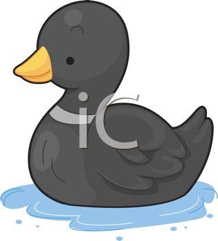 317x350 Little Black Duck