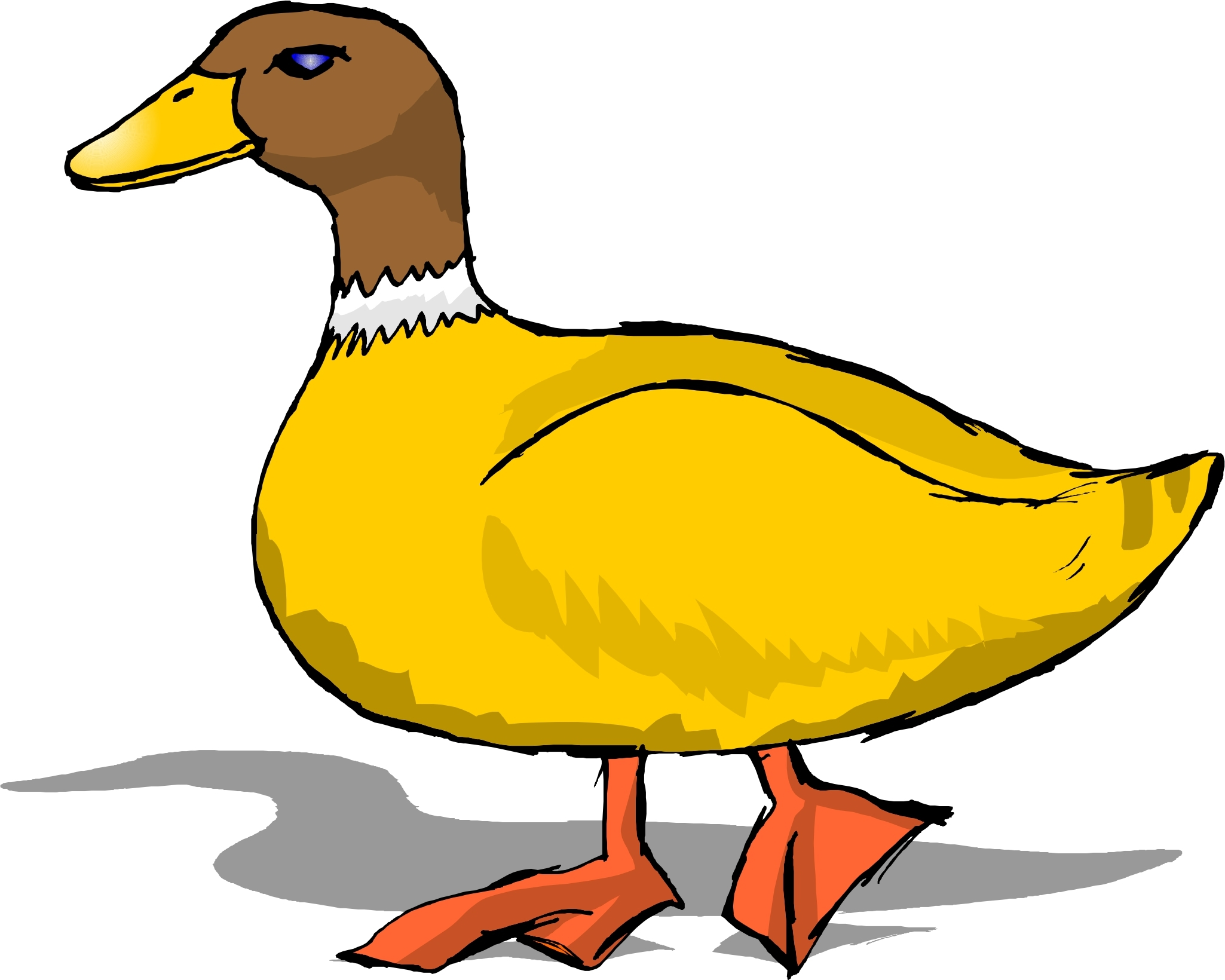 2050x1640 New Ducks Clipart Collection