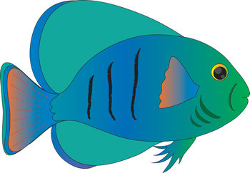 350x243 Free Clip Art Picture Of A Blue And Green Tropical Fish