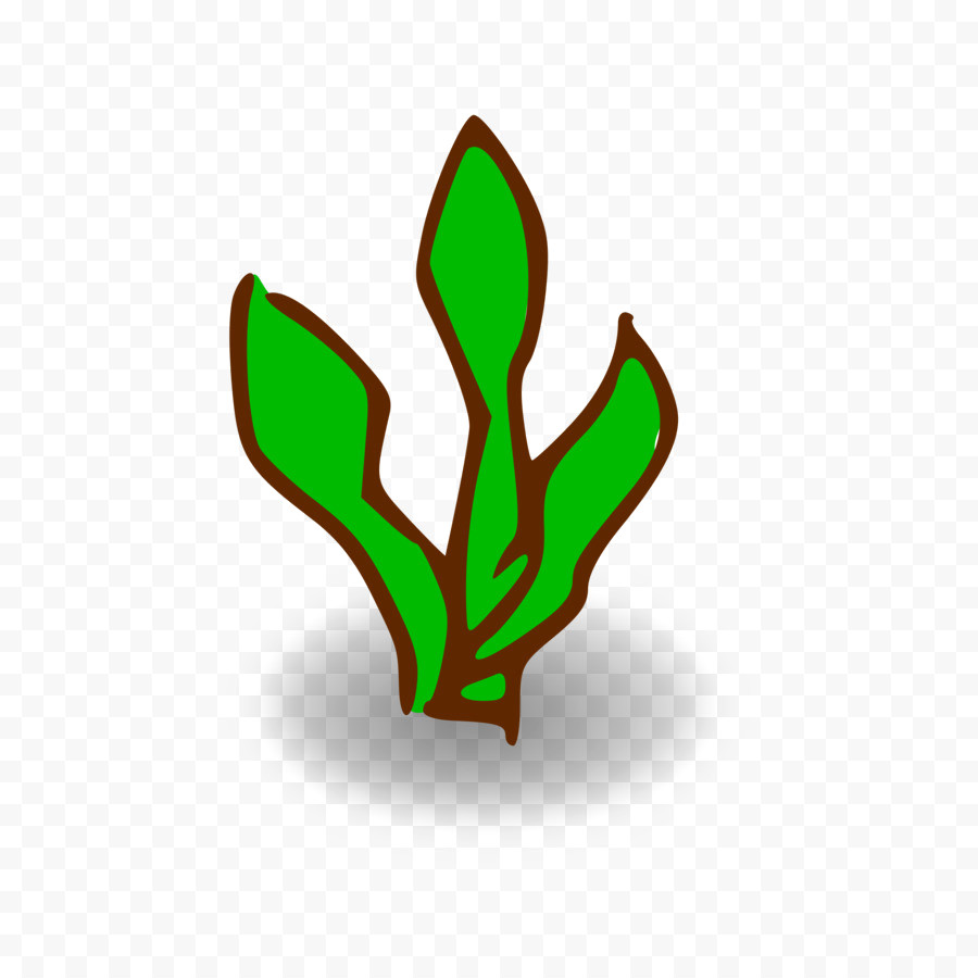 Free Forest Clipart