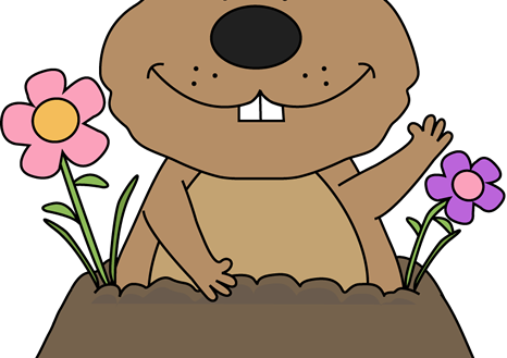 466x329 Limited Groundhog Pictures Free Day Clip Art Images Sporturka