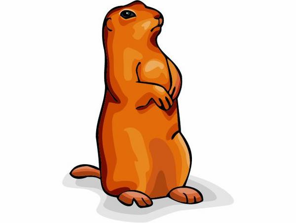 600x451 Marmot Clipart Cute Free Collection Download And Share Marmot