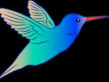 220x165 Hummingbird Clipart Free Cute Hummingbird Illustration Free Clip