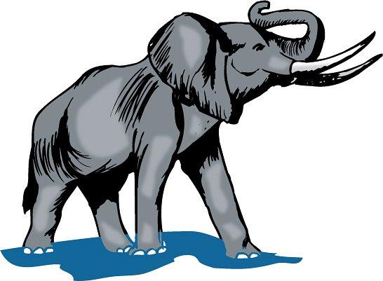546x401 Elephant Clipart
