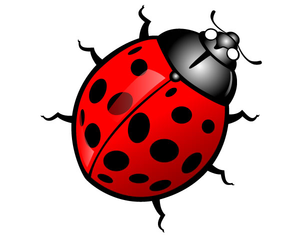 300x235 Free Cute Insect Clipart Free Images