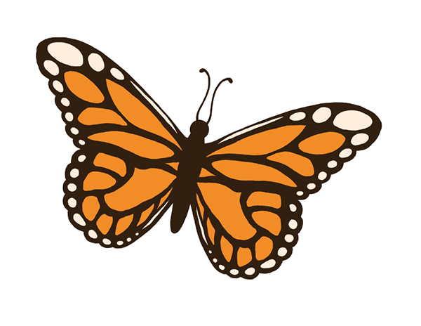 600x464 Insect Clip Art On Behance