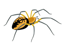 210x153 Clipart Of Spider Amp Clip Art Of Spider Images