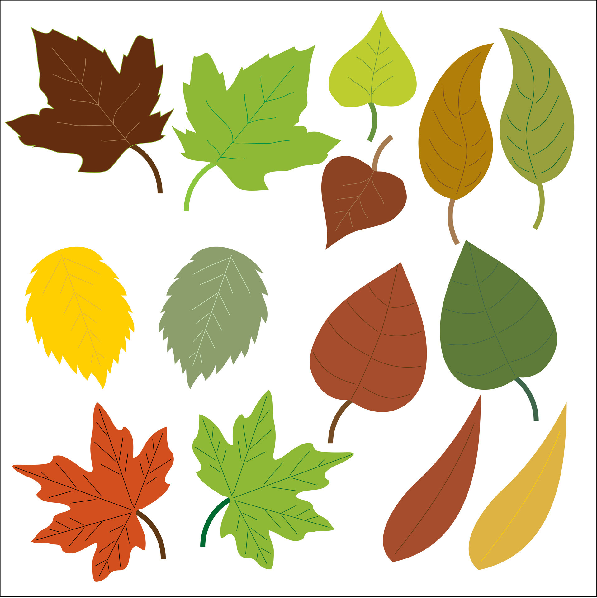 1917x1920 Well Suited Design Fall Leaves Clipart Free Leaf Clip Art