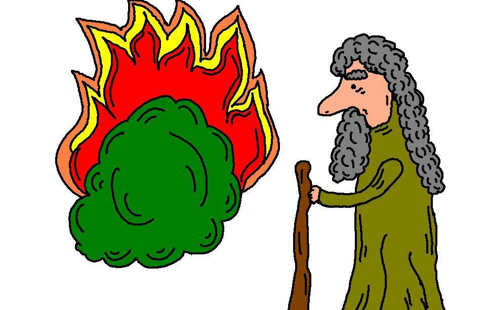 962x613 Bush Clipart The Burning