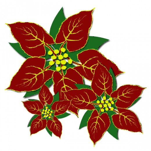 520x520 Free Poinsettia Clipart Amp Look At Poinsettia Clip Art Images