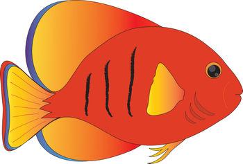 350x237 Fins Clipart Fish Nemo
