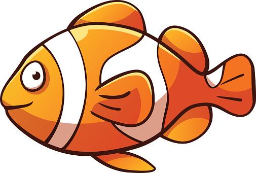 505x341 Clownfish Clown Fish Cartoon Clipart