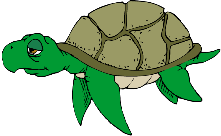 750x461 Cartoon Turtle Clipart Free Clip Art Images Image 9