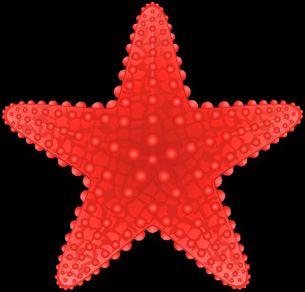 600x574 Starfish Transparent Png Clip Art Image Beach Clipart
