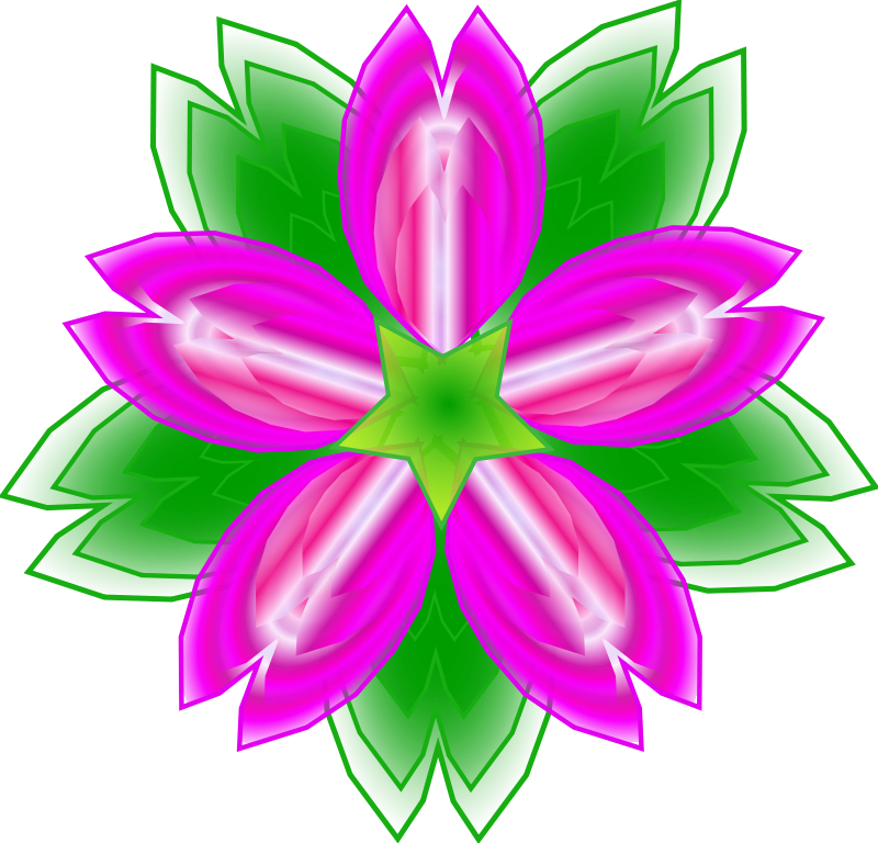 800x768 Nice Decoration Saguaro Cactus Blossom Clip Art Coloring Page Free