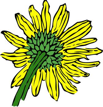 336x348 Sunflower Clip Art Free Printable Clipart 5
