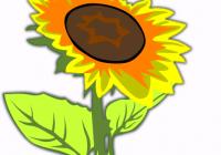200x140 Sunflower Clipart Free Sunflower Clip Art Free Printable Free