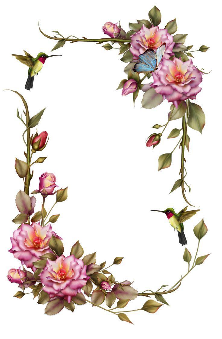 736x1120 Best Hd Vintage Flowers Clip Art Borders Pictures Clip Art