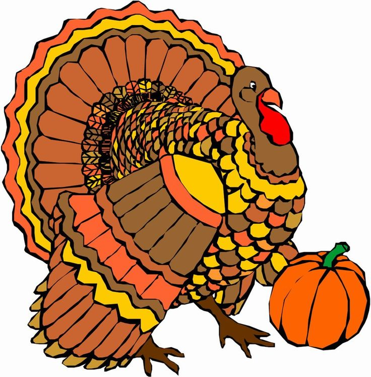 736x748 122 Best Thanksgiving Images On Happy Thanksgiving