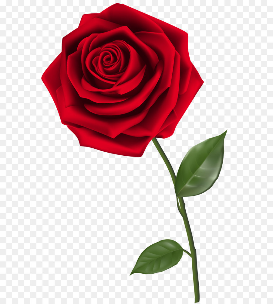 900x1000 Rose Clip Art