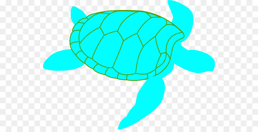 900x460 Green Sea Turtle Leatherback Sea Turtle Clip Art