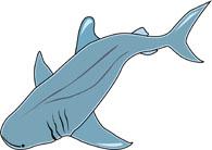 195x138 Free Shark Clipart