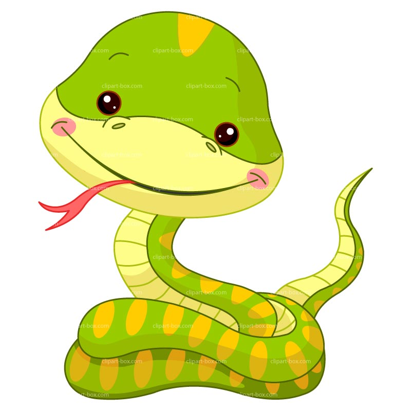 800x800 Collection Of Cartoon Snake Clipart High Quality, Free