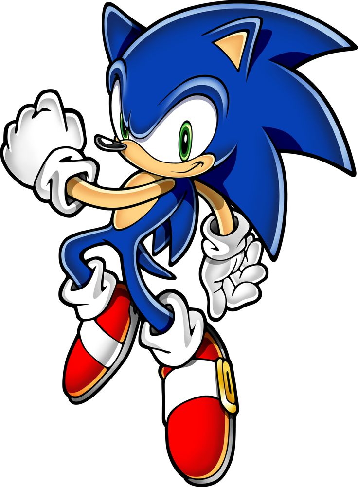 736x1001 26 Best Sonic Images On Hedgehog, Hedgehogs And Pygmy