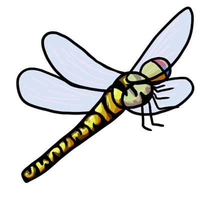 400x400 25 Free Dragonfly Clip Art Drawings And Colorful Images